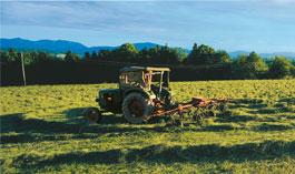 Traktor - Hofgut Schwaige